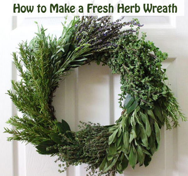 how to make a fresh herb wreath- DIYscoop.com