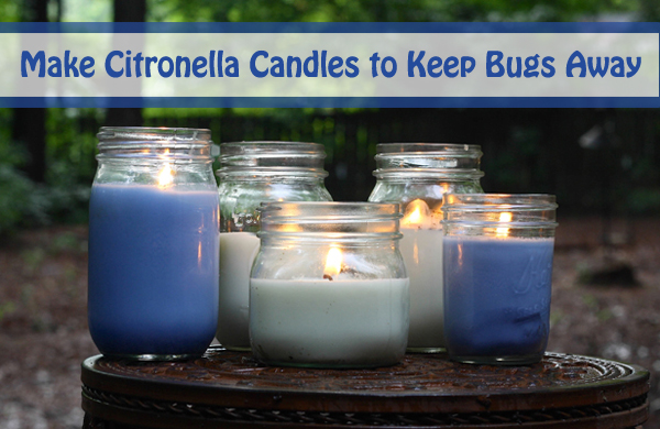 make citronella candles to keep bugs away- DIYscoop.com