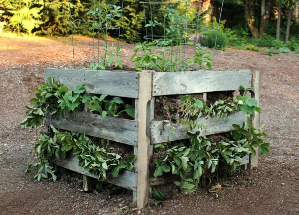 make raised pallet garden beds- DIYscoop.com