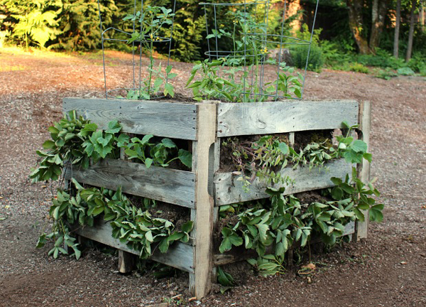 make raised pallet garden beds diyscoopcom - Pallet Garden Bed