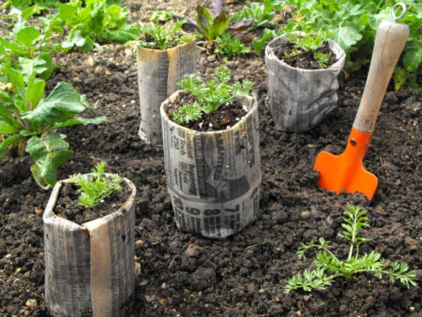 newspaper seed starter pots- DIYscoop.com