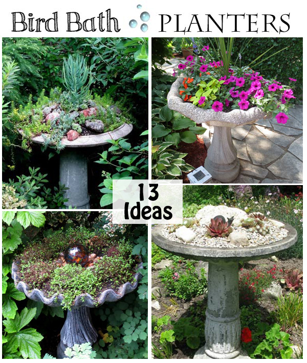 turn an old bird bath into a planter-DIYscoop.com