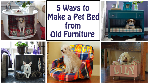 5 ways to make a pet bed from old furniture- DIYscoop.com