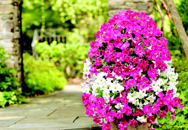 blooming tower of flowers- DIYscoop.com
