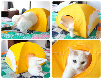 cat tshirt tent