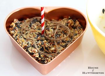 diy birdseed cake - DIYscoop.com