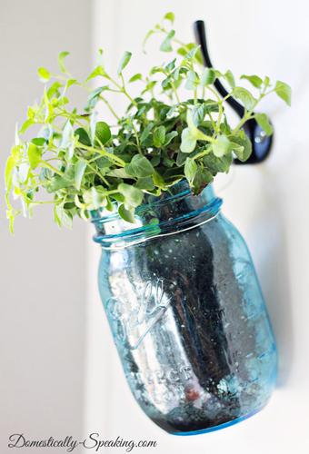 hanging mason jar herb planter- DIYscoop.com